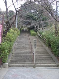 nozaki_kaidan1_201703.jpg