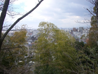 nozaki_view01_201703.jpg
